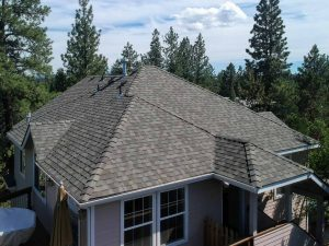 Best Shingle Roof